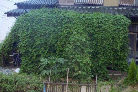 木田 様(阿見町)