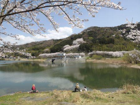 「水ぬるむ頃」 山口 定夫 様(撮影場所:桜川市つくし湖)