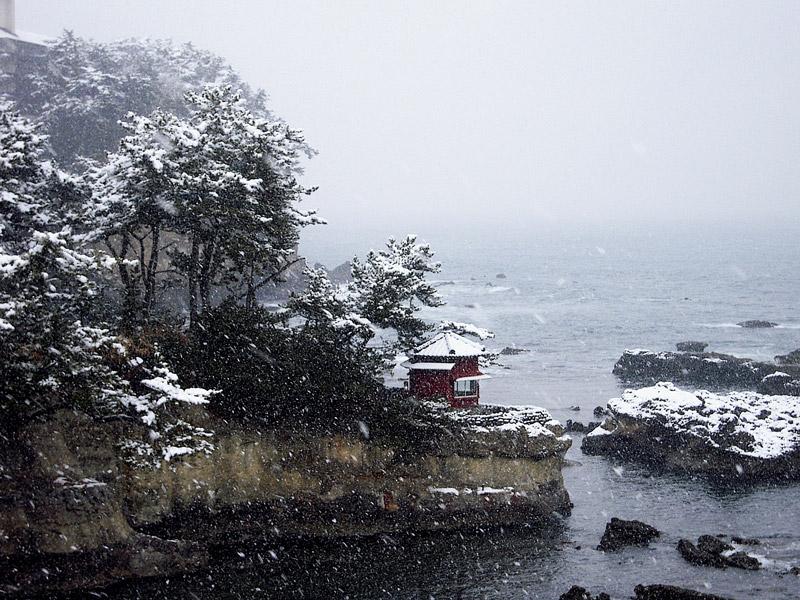 「雪化粧」 田所 とも子 様(撮影場所:北茨城市五浦)